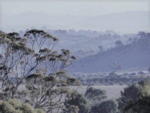 Faded Morning in New South Wales hills.