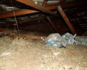 Garbage bags are found in the roof.